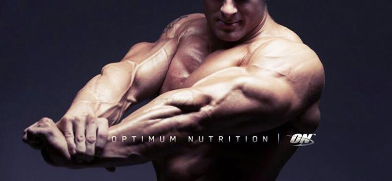 bcaaотoptimumnutrition