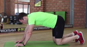 Растяжка квадрицепсов стоя на четвереньках: работающие мышцы и техника выполнения