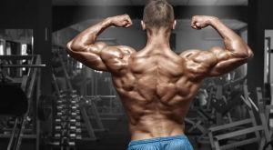 Результаты тренировок: как повысить силовые показатели в бодибилдинге и силовых видах спорта