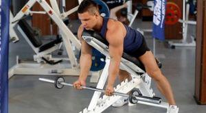 Подъем штанги на бицепс на наклонной скамье: работающие мышцы и техника выполнения