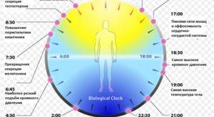 Секреты долголетия — правила и рецепты: сон, питание, чистый воздух и вода, медитация, приложения