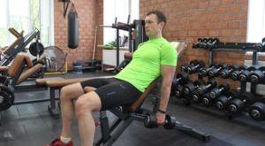 Подъем гантелей на бицепс через стороны сидя: работающие мышцы и техника выполнения