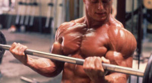 Гипертрофия мышц — что это такое, отличие миофибриллярной или саркоплазматической гипертрофии для развития спортивных качеств атлета