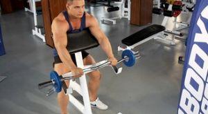 Сгибание рук на бицепс на скамье Скотта с EZ-штангой обратным хватом: работающие мышцы и техника выполнения