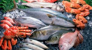 Польза морепродуктов для организма человека — список и