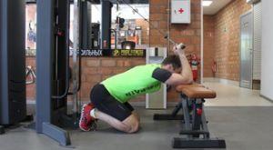 Разгибание рук на тросовом тренажере из-за головы стоя на коленях: работающие мышцы и техника выполнения