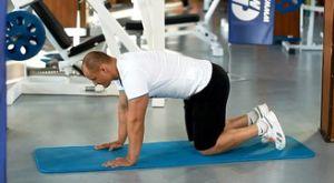 Круговые вращения ногой стоя на четвереньках: работающие мышцы и техника выполнения