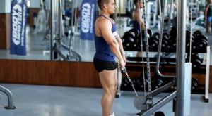 Шраги на нижнем блоке: работающие мышцы и техника выполнения